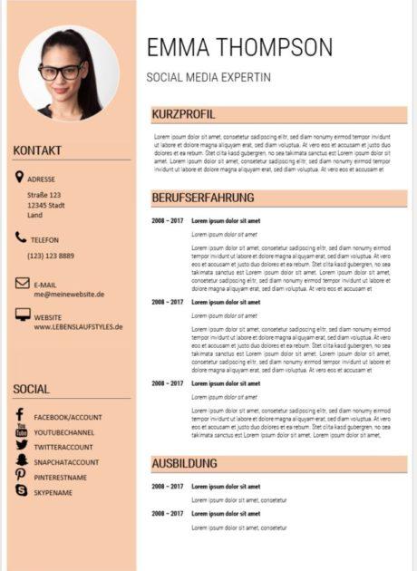 moderner Lebenslauf Muster 1 modern Social Media Experte