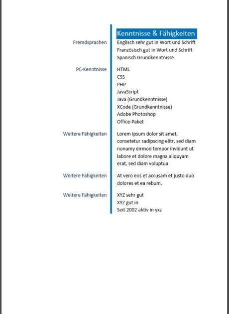 Lebenslauf Muster einfach und modern