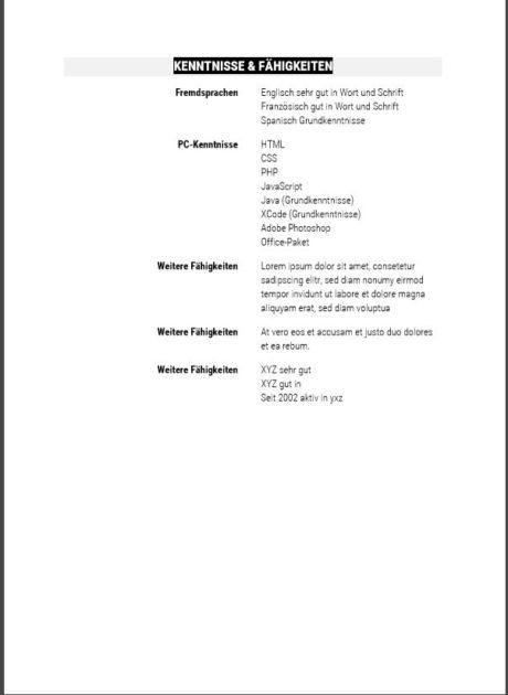 tabellarischer Lebenslauf 06